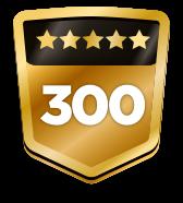 300+ ratings